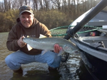 Eel River Steelhead